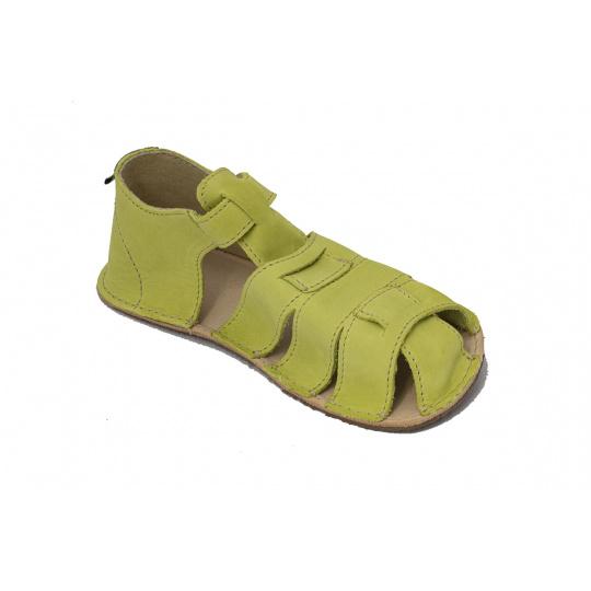 OKbarefoot Palm BFD201 zelené 008 H